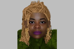 Efit Issued After Aggravated Burglary in Northolt