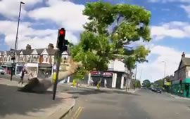 Moment Tree Falls Down in Ealing Caught on Camera