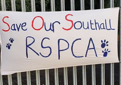 Southall Cattery Threatened With Closure